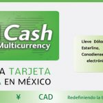 CICash Multicurrency